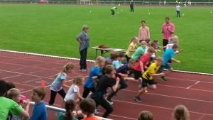 800-Meter-Lauf